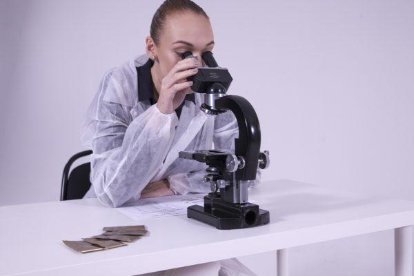 kolagen pod mikroskopem